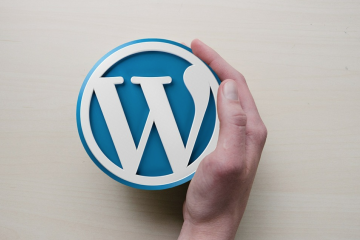 Wordpress Websites and blogs